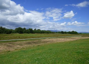 Thumbnail Land for sale in Kirkcowan, Newton Stewart