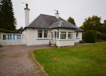 Thumbnail 3 bed bungalow to rent in Drummond Crescent, Inverness