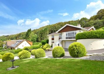 Thumbnail 4 bed detached house for sale in Loveny Road, St. Neot, Liskeard, Cornwall