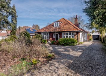 Thumbnail 4 bed bungalow for sale in Thunder Lane, Thorpe St. Andrew, Norwich