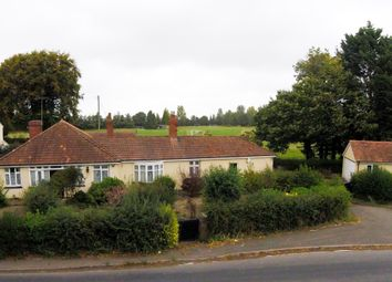 Thumbnail 3 bed bungalow for sale in Clehonger, Hereford