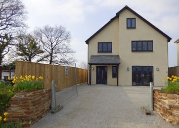Thumbnail 5 bed detached house for sale in Broadwoodkelly, Winkleigh