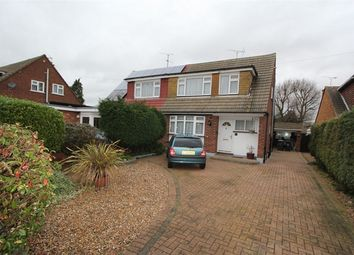 Thumbnail 3 bed semi-detached house to rent in Mapledene Avenue, Hullbridge, Hockley, Essex
