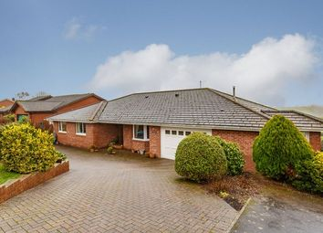 Thumbnail 3 bed detached bungalow for sale in Lapford, Crediton