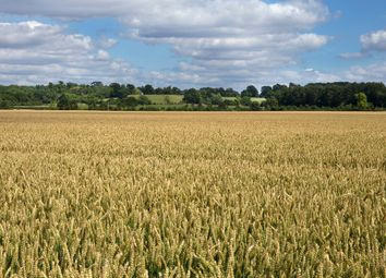 Thumbnail Farm for sale in High Street, Hinton Waldrist, Nr Faringdon