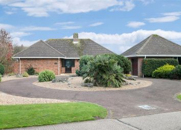 Thumbnail 4 bed detached bungalow for sale in Pigeonhouse Lane, Willowhayne, Rustington