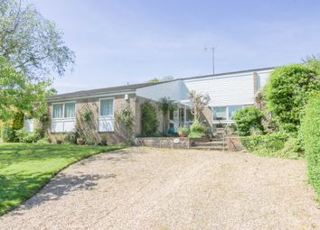 Thumbnail 4 bed bungalow for sale in Thruxton, Andover, Hampshire