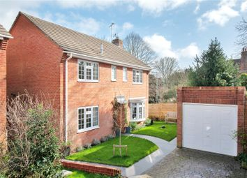 Thumbnail 4 bedroom detached house for sale in Queen Annes Close, Lewes, East Sussex