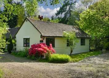 Thumbnail 3 bed cottage for sale in Headley Common Road, Headley