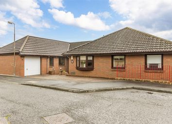 Thumbnail 4 bed bungalow for sale in Player Green, Livingston
