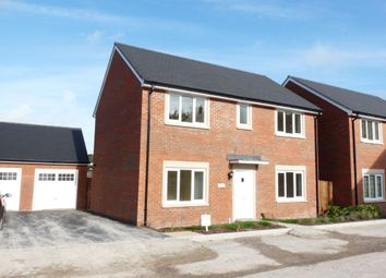 Thumbnail 4 bed detached house to rent in Diamond Way, Blandford Forum, Dorset