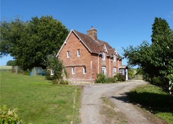 Thumbnail 4 bed detached house to rent in Gussage All Saints, Wimborne, Dorset