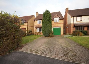 Thumbnail 4 bed detached house for sale in Stable Close, Hook