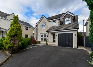 Thumbnail 4 bed detached house for sale in Fulmar Drive, Kendal