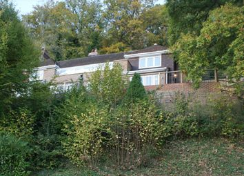 Thumbnail 4 bed detached house to rent in Deanery Road, Godalming