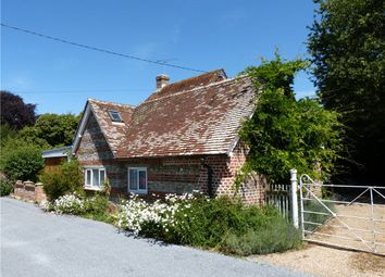 Church Lane, Shillingstone, Blandford Forum, Dorset DT11. 3 bed detached house to rent