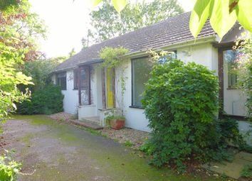 Thumbnail 2 bed detached bungalow for sale in The Laurels, Canon Pyon, Hereford