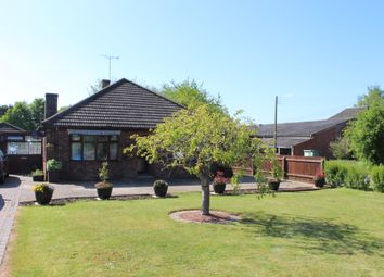 Thumbnail 3 bed detached bungalow to rent in Station Road, Potterhanworth