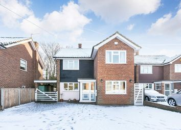 Thumbnail 4 bed detached house to rent in Lodge Close, Chigwell