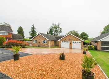Thumbnail 3 bedroom detached bungalow for sale in South Lodge Court, Old Road, Chesterfield