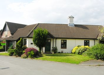 Thumbnail 2 bed bungalow for sale in Lower Hall Lane, Clutton, Chester