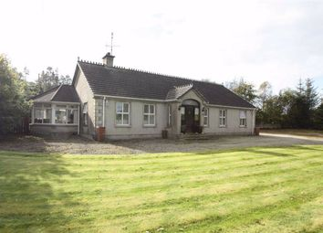 Thumbnail 5 bed detached bungalow for sale in Dunnanew Road, Seaforde, Down