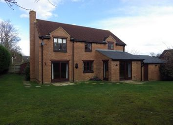 Thumbnail 4 bed property to rent in Top Common, Warfield, Bracknell