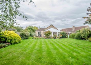 Thumbnail 4 bedroom bungalow for sale in Mereside, Soham, Ely