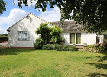 Thumbnail 3 bed detached bungalow for sale in St Weonards, Marbern, Herefordshire