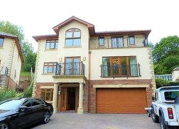 Thumbnail 4 bed detached house for sale in Brecon Walk, Treharris