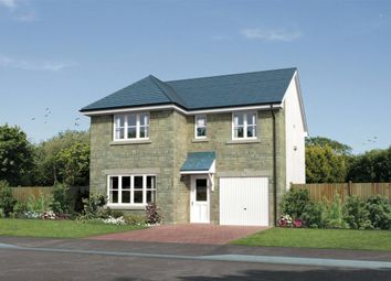 "Thumbnail 4 bedroom detached house for sale in ""Dukeswood"" at Meikle Earnock Road, Hamilton"