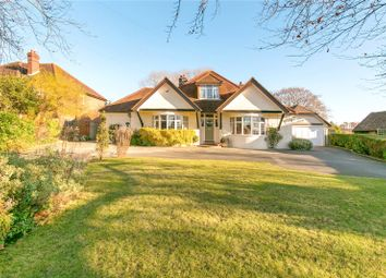 Thumbnail 4 bed detached house for sale in Brockham Lane, Brockham, Betchworth, Surrey