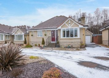 Thumbnail 3 bed bungalow for sale in Keirfold Avenue, Tullibody, Alloa
