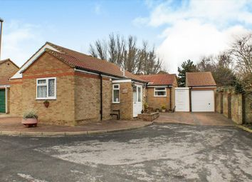 Thumbnail 3 bed detached bungalow for sale in Wade Close, Eastbourne