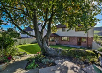 Thumbnail 4 bed detached house for sale in Carn-Y-Tyla Terrace, Tredegar, Caerffili