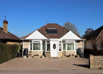 Thumbnail 5 bed detached bungalow for sale in Station Road, Westbury