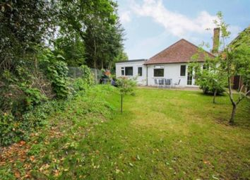 4 bed detached bungalow for sale in Ashford Avenue, Ashford TW15