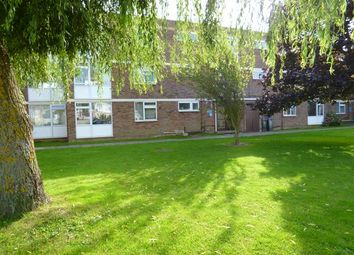 Thumbnail 2 bed flat to rent in Rogate Road, Worthing
