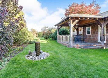 Thumbnail 3 bed bungalow for sale in Red Street, Southfleet