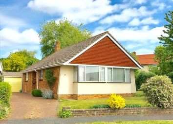 Thumbnail 2 bed detached bungalow for sale in Redlands Lane, Emsworth