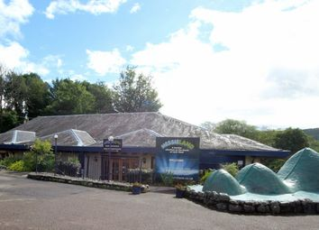 Thumbnail Leisure/hospitality for sale in Nessieland, Drumnadrochit, Loch Ness, Inverness-Shire
