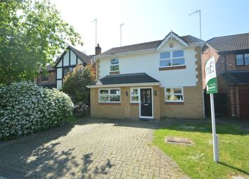 Thumbnail 4 bed detached house to rent in Connaught Drive, Weybridge, Surrey