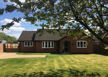 Thumbnail 4 bed detached bungalow to rent in Common Road, Bressingham, Diss, Norfolk