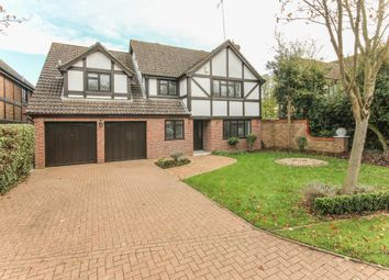 Thumbnail 6 bed detached house for sale in Forest End, Kennett, Newmarket