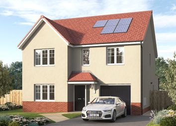 """Thumbnail 4 bed detached house for sale in """"The Tambrook"""" at Aurs Road, Barrhead, Glasgow"""