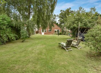 Thumbnail 3 bed detached bungalow to rent in Scotland Hill, Sandhurst, Berkshire