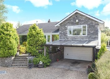 Thumbnail 3 bed detached house for sale in Chaldon Herring, Dorchester