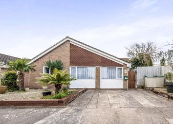 Thumbnail 3 bed bungalow for sale in Windmill, Paignton, Devon