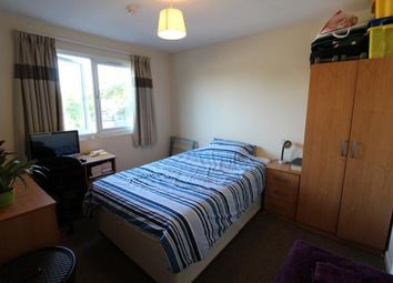 Thumbnail 1 bedroom terraced house to rent in Salisbury Road, Cathays, Cardiff