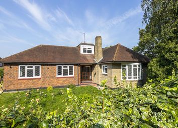 Thumbnail 5 bed bungalow to rent in Fernside, Buckhurst Hill